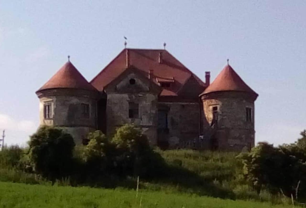Castelul Pekri